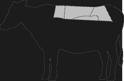 Argentinisches Rind